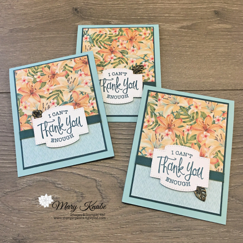 Tropical Oasis Designer Series Paper & So Sentimental Bundle by Stampin' Up!