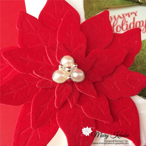 Shadow Box Cards with Poinsettia Place Suite by Stampin' Up!