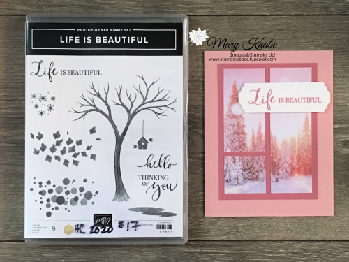 Life is Beautiful Stamp Set & Feels Like Frost DSP by Stampin' Up!