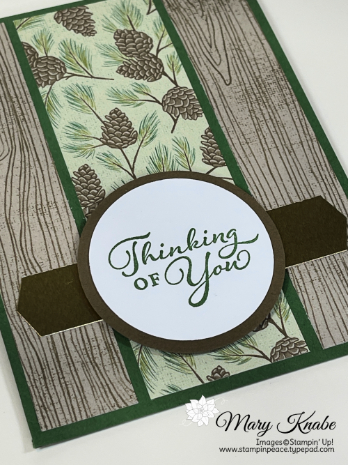 Happy Thoughts Stamp Set & Poinsettia Place Designer Series Paper