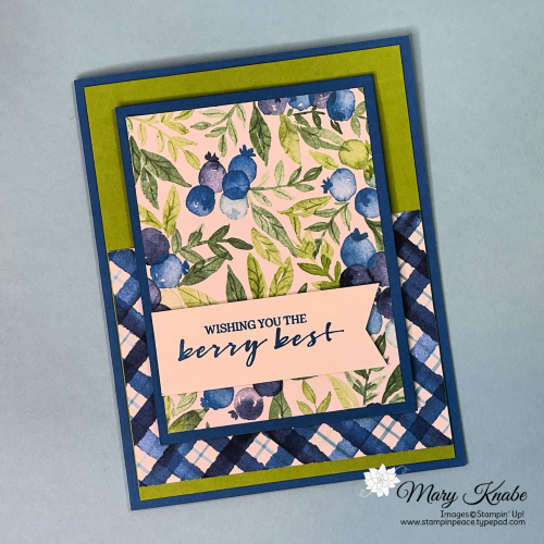 Berry Blessings Stamp Set & Berry Delightful Designer Series Paper