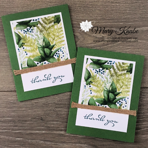 Forever Greenery Designer Series Paper & Borders Abound Stamp Set