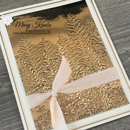 Evergreen 3-D Embossing Folder by Stampin' Up!