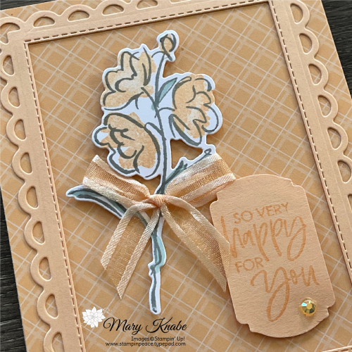 Color & Contour Bundle with 2021-2023 In Colors by Stampin' Up! - Mary Knabe (4)