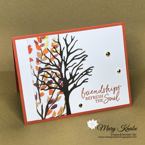 Stampin' Up! Beauty of the Earth Suite - Mary Knabe (5)