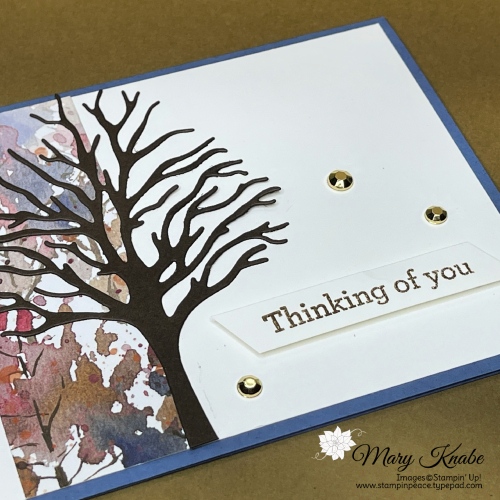 Stampin' Up! Beauty of the Earth Suite - Mary Knabe (2)